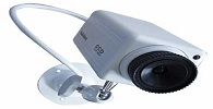 Frigorífico é condenado por instalar câmeras em vestiários e controlar uso do banheiro
